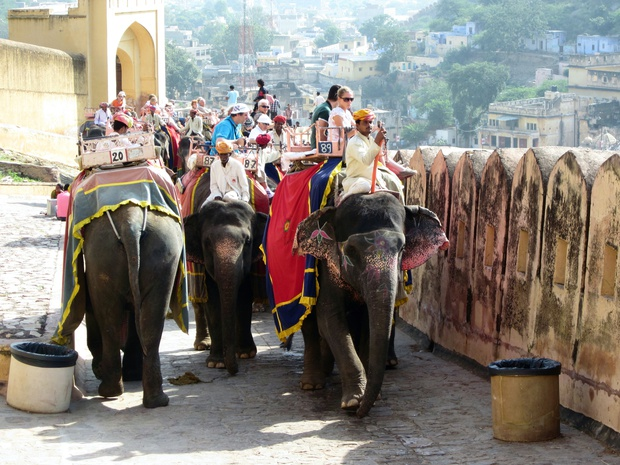 Tourists riding elephants, Amber Palace, Jaipur, India